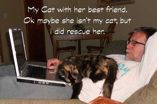 cat-friend