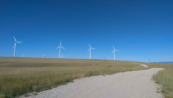 Just a few of the hundreds of windmills I saw this week.