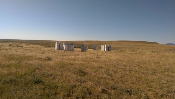 One of the many bee hives out there on the open range.